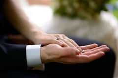 Groom holding bride's hand Royalty Free Stock Images