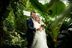 Groom holding bride under palms at jungle Stock Photo