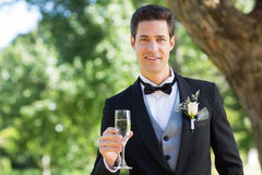 Groom holding champagne flute in garden. Portrait of handsome groom holding champagne flute in garden Stock Photos