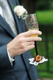 Groom is holding painting champagne glasses Royalty Free Stock Photos