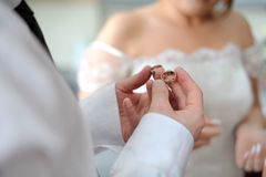 Groom holding two wedding rings Stock Photography