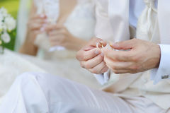 Groom is holding two wedding rings Royalty Free Stock Image