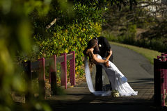 Groom holding wife and kissing on a bridge Royalty Free Stock Photography