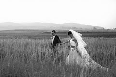 Groom holds bride's hand while they cross a field Royalty Free Stock Images