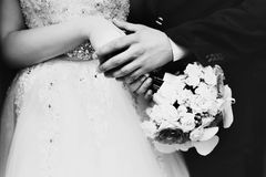 Groom holds bride's hands carefully Stock Image
