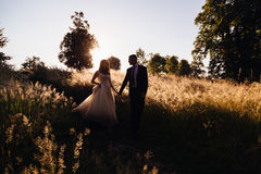 Groom holds bride& x27;s hand while they go down from the hill Stock Photography