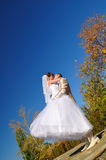The groom holds his bride in his arms Royalty Free Stock Photography