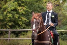 Groom on horse Stock Photo