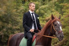 Groom on horse Stock Photography