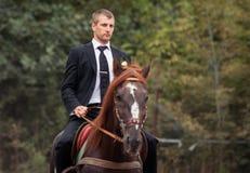 Groom on horse Stock Photos