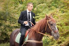 Groom on horse Stock Images