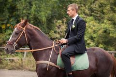 Groom on horse Stock Photos