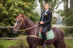 Groom on horse Royalty Free Stock Image