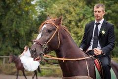 Groom on horse Royalty Free Stock Photos