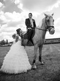 Groom on horse near bride Stock Photos