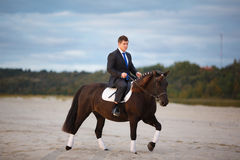 Groom on a horse Stock Photography