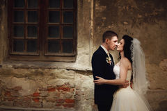 Groom huging kissing beautiful bride near wall outdoors Lviv.  royalty free stock images