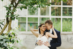 Groom hugs a bride from behind standing under the trees Royalty Free Stock Images
