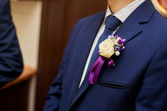Groom in a jacket with a buttonhole Stock Images