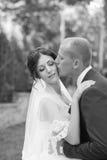 The groom kisses the bride on the cheek. Beautiful bride hugs and kisses on the cheek in nature Stock Photos