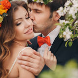 The groom kisses the bride in the flowered Park. Royalty Free Stock Photography