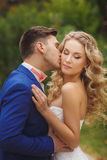 The groom kisses the bride in a green Park in the summer. Royalty Free Stock Photos