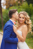 The groom kisses the bride in a green Park Stock Photography