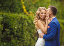 The groom kisses the bride in Park in the summer. Stock Image