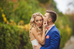 The groom kisses the bride in Park in the summer. Stock Photography