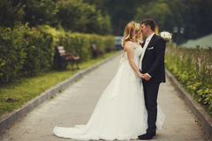 Groom kisses bride's nose tenderly standing on the road Stock Images