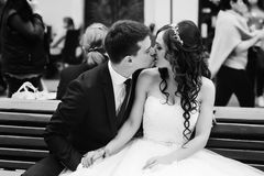 Groom kisses a bride tender sitting with her on a wooden bench Stock Photos