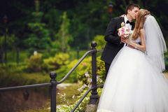 Groom kisses bride tenderly holding her waist while they stand o. N a bridge Royalty Free Stock Images