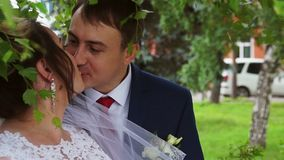 The groom kisses the bride. Under the tree stock video footage