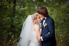 The groom kisses the bride at a wedding in the woods Royalty Free Stock Image