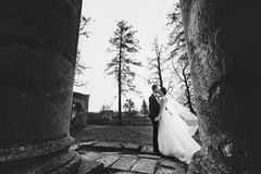 Groom kisses a bride while wind blows her veil away Stock Photos