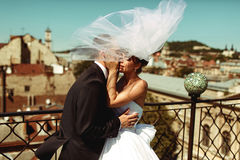 Groom kisses tenderly bride while veil covers them Stock Images