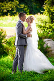 Groom kissing blonde bride at park on lawn Stock Photography