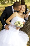 Groom kissing a bride. Happy young pair on a background of green trees,  groom kissing a bride Stock Photo