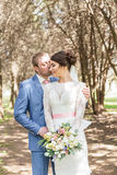 Groom kissing bride on alley with trees Royalty Free Stock Images