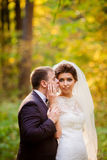 The groom is kissing the bride in autumn forest. Standing under the branches with yellow autumn leaves Royalty Free Stock Photography