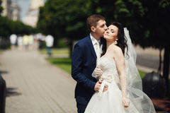 Groom kissing bride on city alley. Blurred background.  Stock Photo