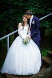 Groom kissing bride Stock Image