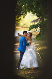 Groom Kissing Bride. Groom hugging and kissing bride at nature Royalty Free Stock Image