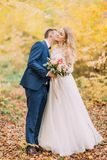 The groom is kissing the bride in the neck. Yellowed forest location. The groom is kissing the bride in the neck. Yellowed forest location Stock Photo