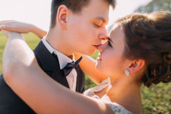 The groom is kissing the bride in the nose in the field. Royalty Free Stock Photo