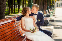Groom kissing bride in park on wooden bench Stock Image