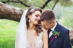 Groom kissing bride in the shoulder . Sensual portrait of a young wedding couple. Royalty Free Stock Image