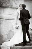 Groom kissing bride. On stairs Stock Photography