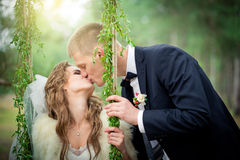 The groom is kissing the bride on a swing. Newlyweds in the wedding day Stock Image