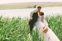Groom kissing bride in tall grass. At sunny day Royalty Free Stock Photos